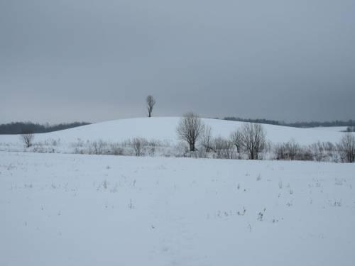 Высшая точка города Витебска, высотой 223.7 м